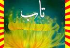Taab Urdu Novel