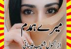 Mery Humdum Urdu Novel By Kanwal Shoaib Essani Last Episode