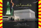 Shikast e Arzoo Urdu Novel By Prof Sajjad Hussain