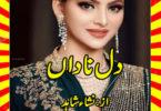Dil E Nadan Urdu Novel By Nisha Shahid Part 1