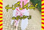 Mohabbat Phool Jesi Hai Urdu Novel By Isha Rajpoot Last Part