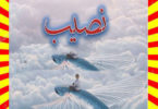 Naseeb Urdu Novel Part 6 By Biya Talhat
