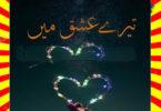 Tere Ishq Mein Urdu Novel By Amal Khatak Part 3