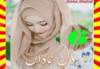 Dil E Nadan Urdu Novel By Nisha Shahid Part 6