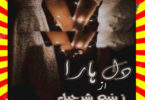 Dil Hara Urdu Novel By Zeenia Sharjeel