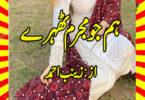 Hum Jo Mujrim Thehry Urdu Novel By Zainab Ahmed