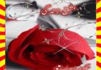Ishq Zindagi Urdu Novel By Sukaina Zaidi