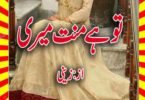 Tu Hai Mannat Meri Urdu Novel By Zaini