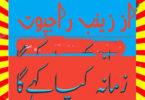 Zamana Kya Kahega Urdu Novel By Zainab Rajpoot