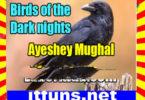 Birds Of The Dark Nights Urdu Novel By Ayeshey Mughal