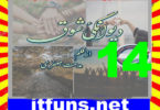 Deewangi E Shouq Urdu Novel By Midhat Jaffery Episode 14