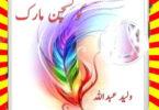 Question Mark Urdu Novel By Walid Abdullah