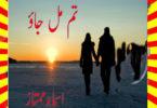 Tum Mil Jao Urdu Novel By Asma Mumtaz