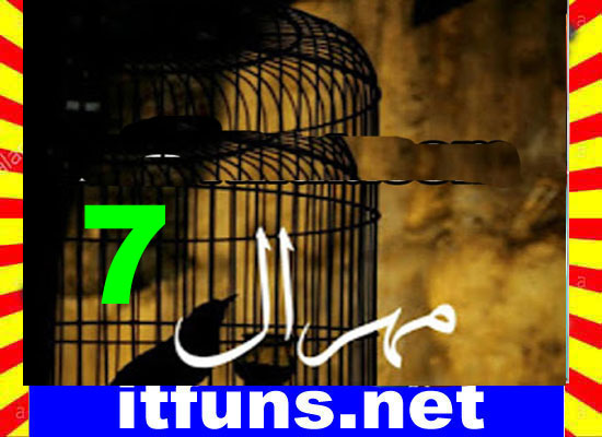 Mehraal Urdu Novel By Sania Mumtaz Part 7