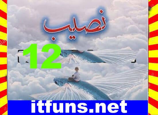 Naseeb Urdu Novel By Biya Talhat Episode 12