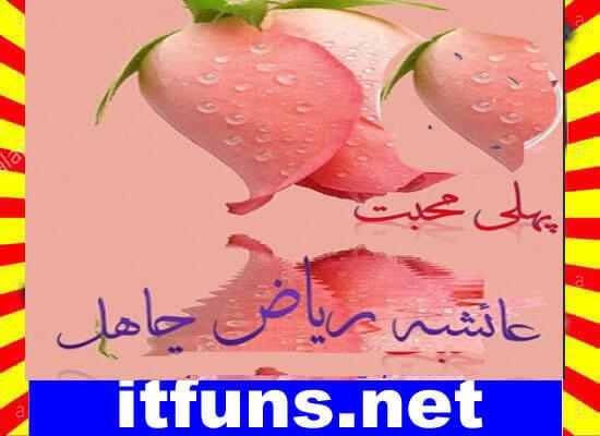Pehli Mohabbat Urdu Novel By Ayesha Riaz Chahal